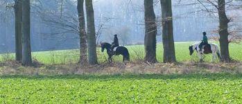 Meerdaalhof - Oud-Heverlee - Wandelingen