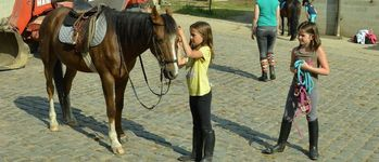 Meerdaalhof - Oud-Heverlee - Fotogalerij(2013 kampen)